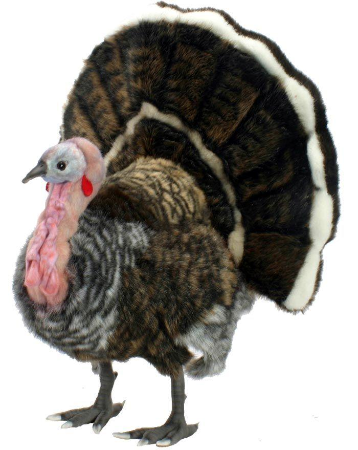 Turkey - Medium 19''H - UNQFurniture