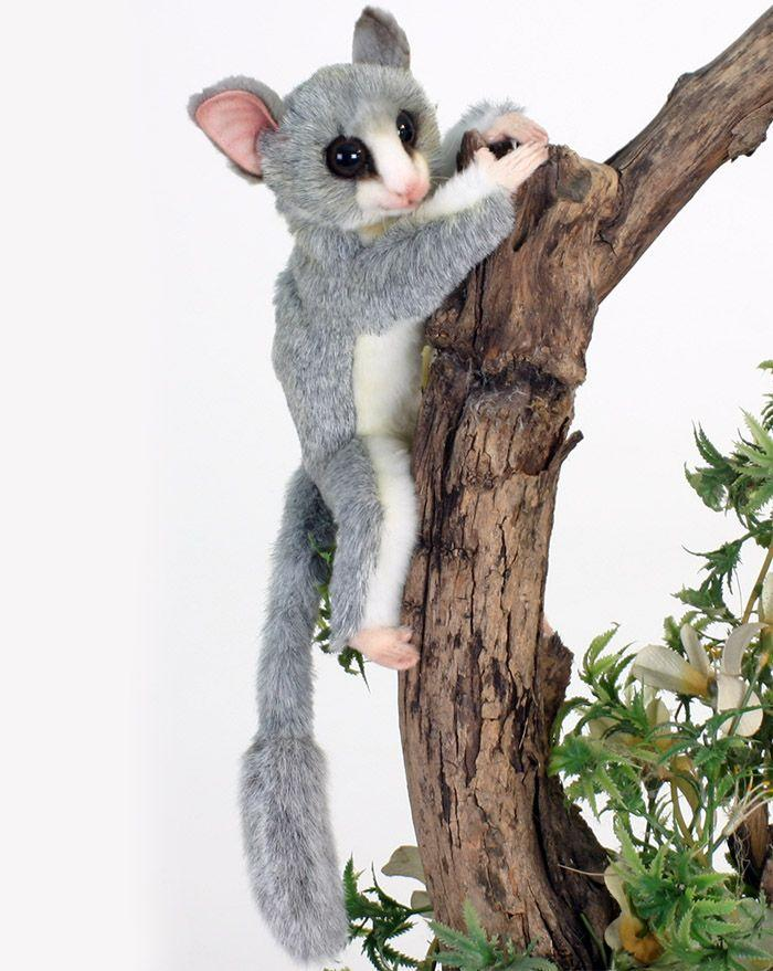 "Bush Baby Senegal 8"" - UNQFurniture"