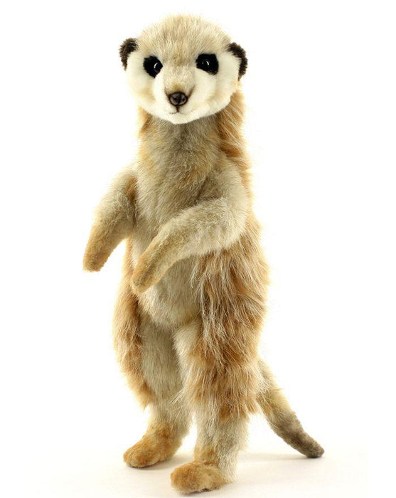 Meerkat 13'' - UNQFurniture