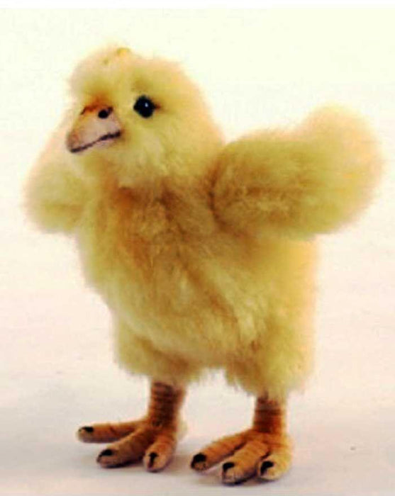 Hen Chicks 4''L X 5''H - UNQFurniture