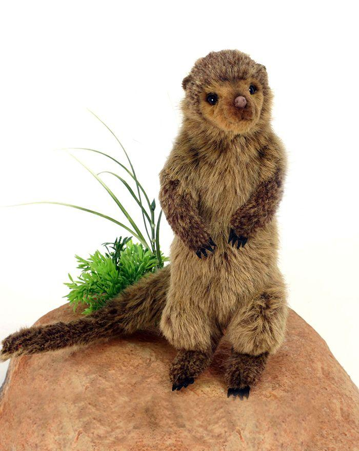 "Dwarf Mongoose 15.3""L (Sp) - UNQFurniture"