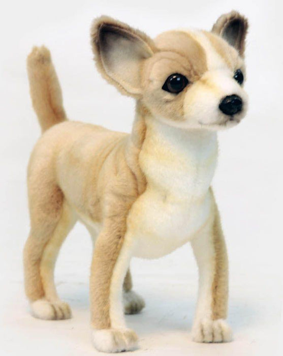 Chihuahua Puppy 11''L - UNQFurniture