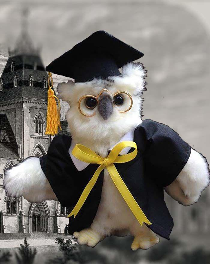 Owl White Graduation 7'' - UNQFurniture