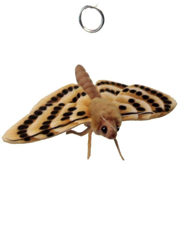 "Moth 7.9""L - UNQFurniture"