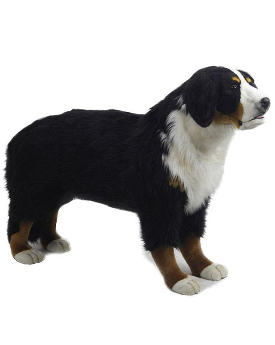 "Bernese Mountain Dog Standing 49""L X 34.5H - UNQFurniture"