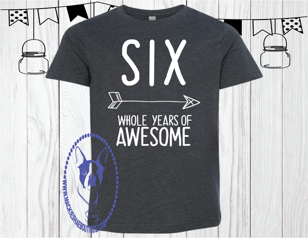 SIX Whole Years of Awesome Arrow Custom Shirt for Kids (get any number), Short Sleeve