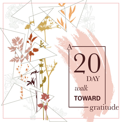 A 20 Day Walk Toward Gratitude