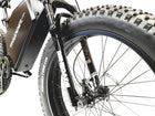 THUNDER X-TREME FAT TIRES CUSTOM E-BIKE