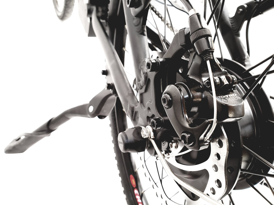 THUNDER STEP-THROUGH E-BIKE
