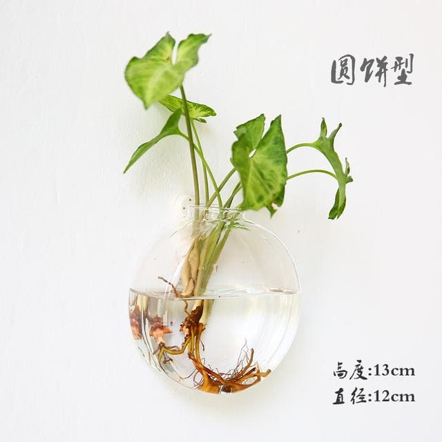 Hanging Wall Glass Vase - Like picture 5 - vase