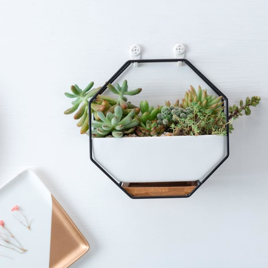 Hexagon Wall Planter - wall planter