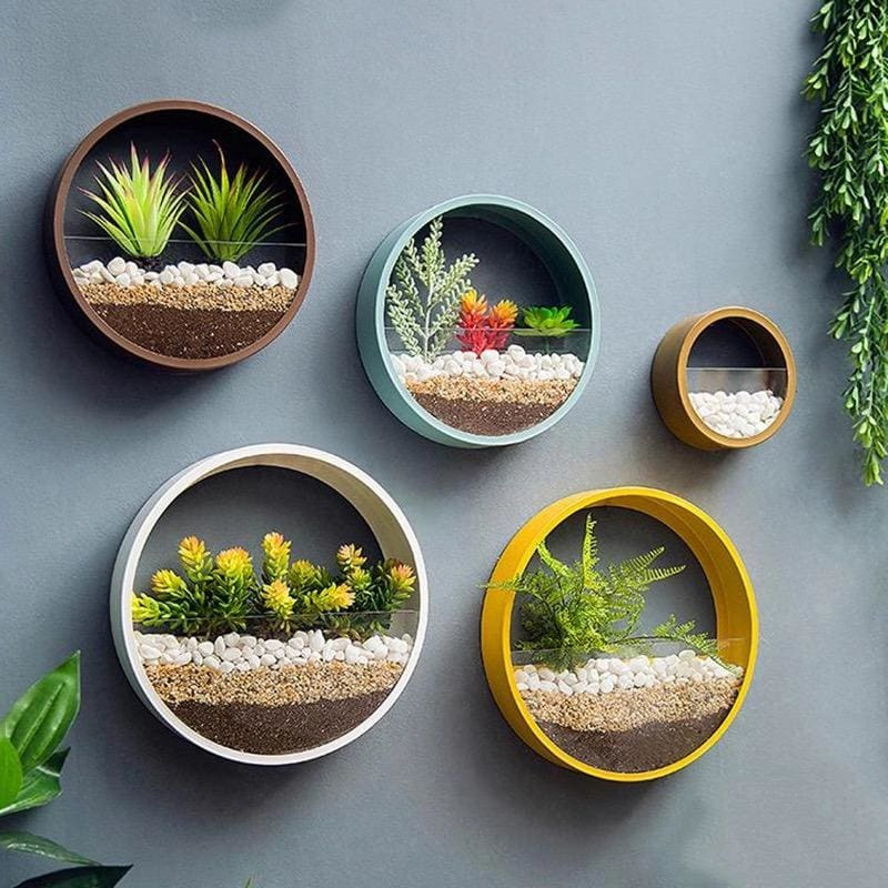 Round Wall Flower Pot - flower pot