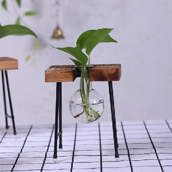 Vase With Wooden Stand - one vase - glass terrarium