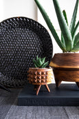 wood planters sitting on book with glazed black clay platter
