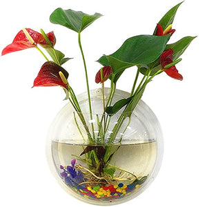 Wall Fish Tank Hanging Clear Acrylic Fish Bubble Flower Plant Pot Aquarium Wall Art Sconce