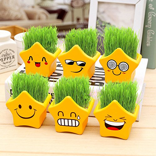 Fun 6 pieces carton ceramic star cool micro expression  potted plant Vase Home Decor Accent