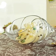 Crystal Clear Glass Conch Shell Vase Terrarium Globe Hydroponic Container Table Accent Home Decor