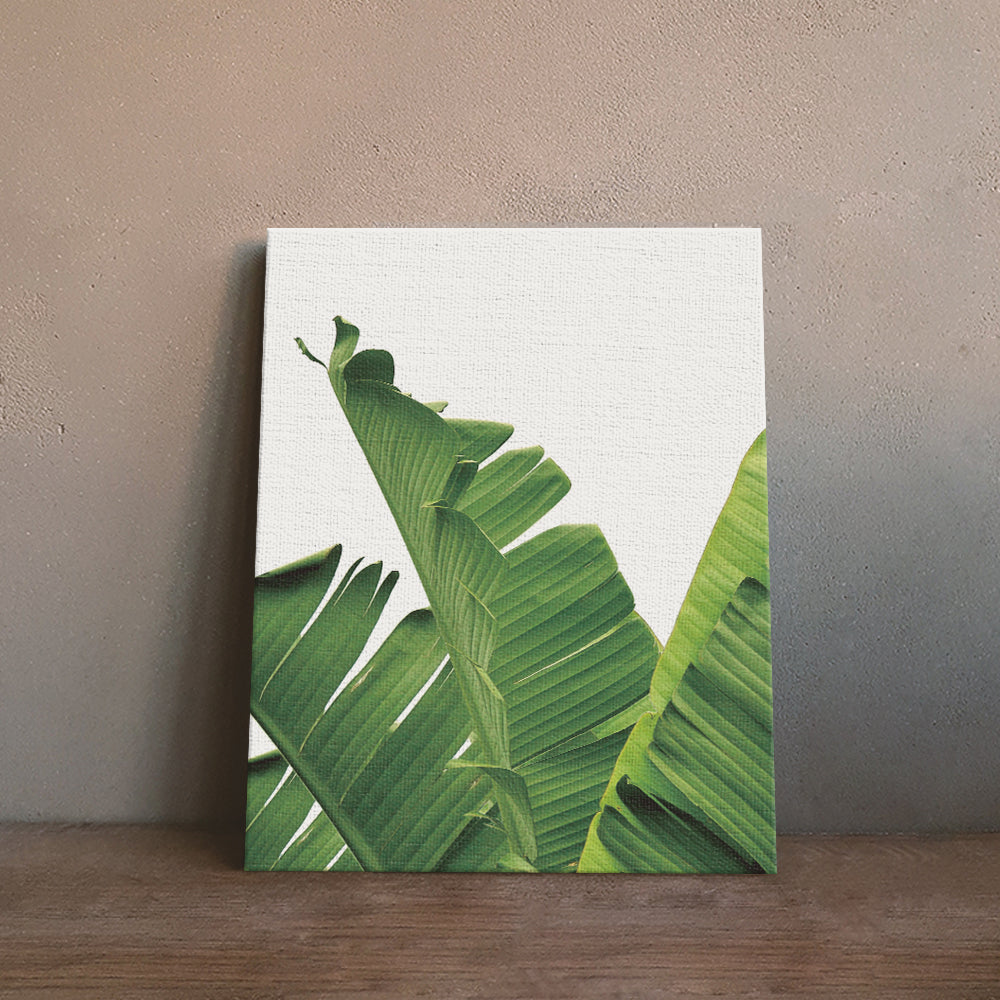 Watercolor Tropical Plant leaves Art Print  Wall Art Pictures for Home Decor Accent for any room