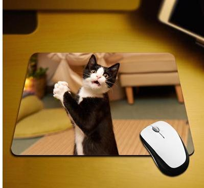 Surprised Kitty Mouse Pad