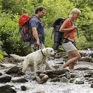 Safely Hiking or Backpacking With Your Dog
