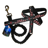 Texas Tech Red Raiders Bungee Ribbon Pet Leash