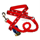Arkansas Razorbacks Bungee Ribbon Pet Leash