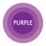 Shop mid-century modern articles in the color purple