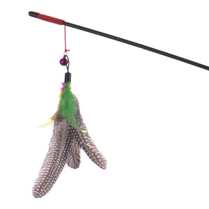 Feather Cat Toy - Baby Buggy Outlet LLC