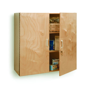 Lockable Wall Mounted Cabinet