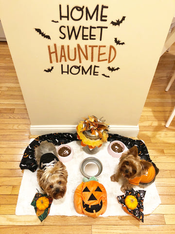 Home Halloween Decor Bowl Area Smalldog Official