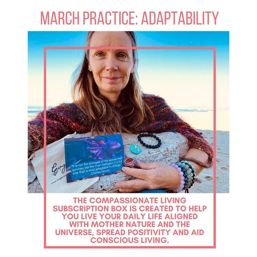 Adaptability - Compassionate Living Practice Box