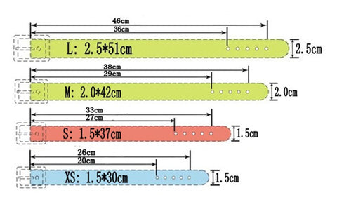 Personalized collar size chart