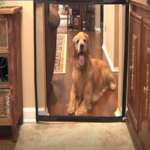 Dog Magic Gate