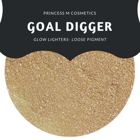 Loose Highlighters- Goal Digger
