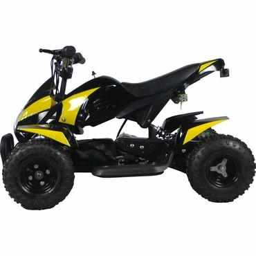 Go-Bowen Gobi Yellow 350W Electric Quad Battery-Powered  ATV - FunRidingToys.com