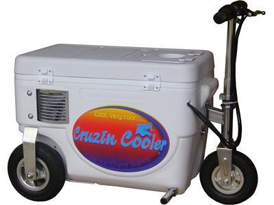 Cruzin Cooler CS-1000_White Cooler Scooter 1000w White - FunRidingToys.com