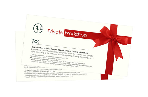 PRIVATE WORKSHOP