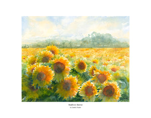 """Sunflower Sunrise"" Tucker, Candice"