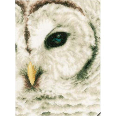 LANARTE PN0163781 Snow Owl eye