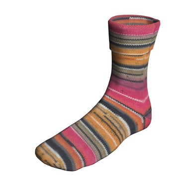 Berroco Sox 14108 Applecross