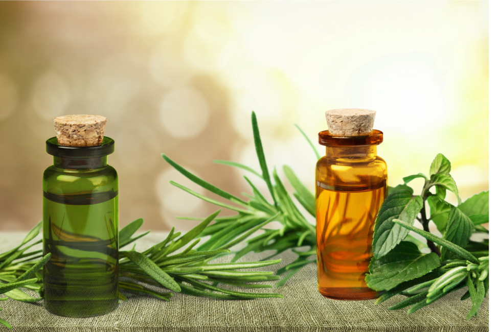 Is Tea Tree Oil Good for Your Hair?
