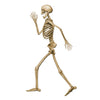 Halloween Party Supplies - Profile Pete Jointed Skeleton
