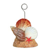 Luau Party Supplies: Seashell Photo/Balloon Holder