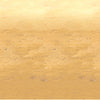 Western Party Supplies - Desert Sand Backdrop