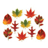 Thanksgiving Party Supplies - Mini Leaf Cutouts