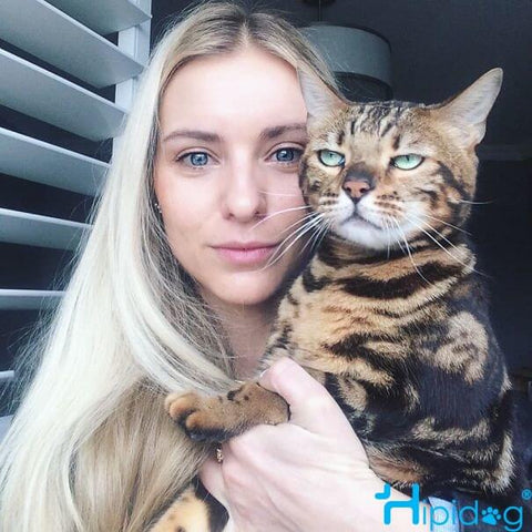 A beautiful girl and an unhappy smelly face cat。Hipidogpet