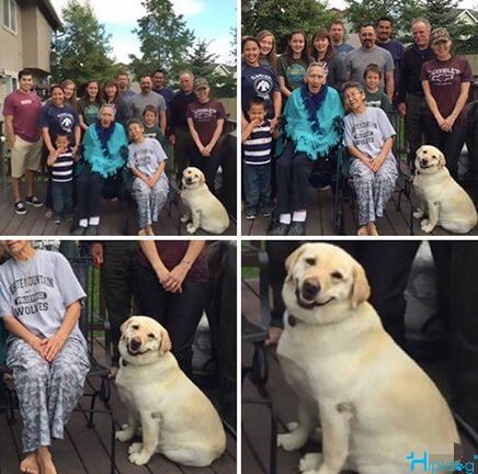 Super posing dog!-The dog taking pictures with owner family.-Hipidogpet