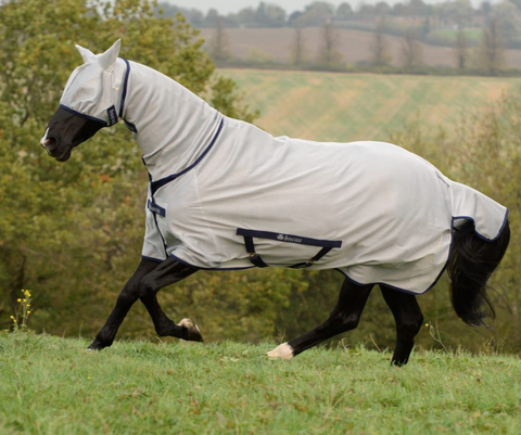 Freedom fly sheet in stock