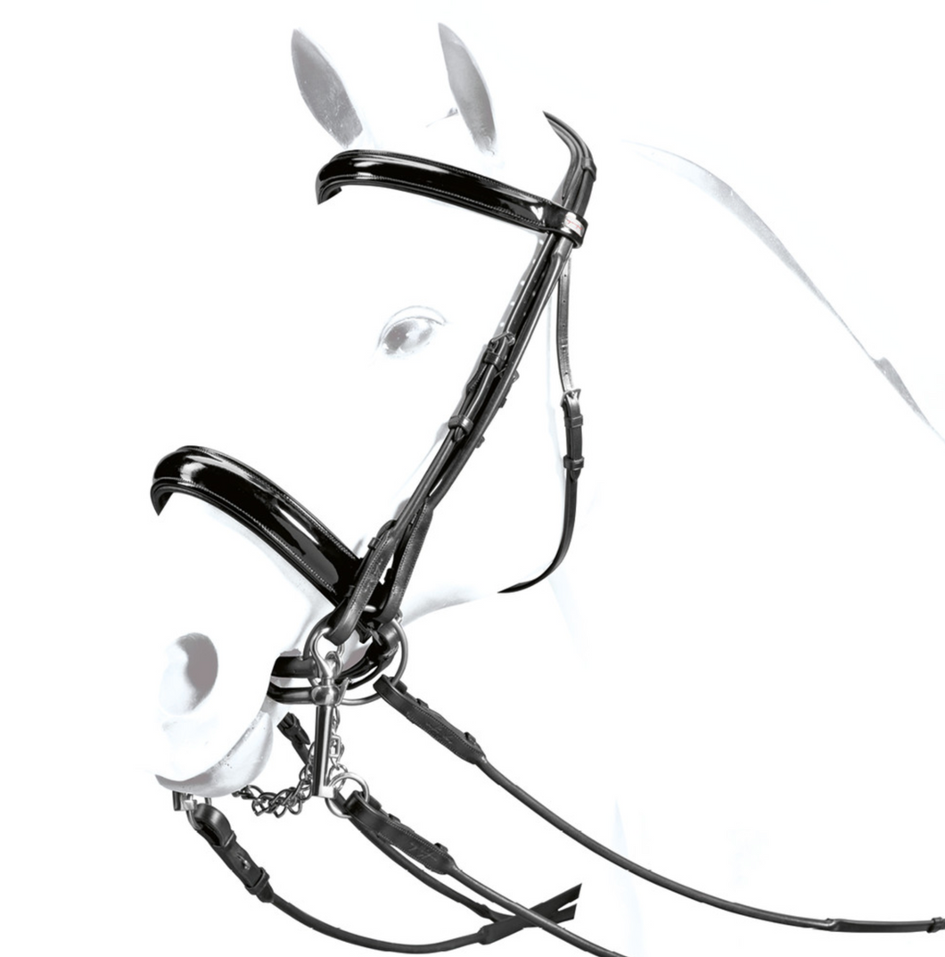 Patent Rolled Double Bridle