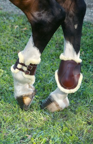 FETLOCK BOOT SHEEPSKIN BUCKLES